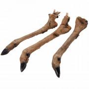 Hirschunterbein mit Fell ca.175-300 gr./Stk.