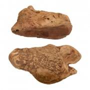 Kauwurzel (Heidebaumwurzel)-Gr.XL